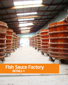 A Traditional Fish Sauce Factory